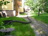 выкачка канализационных стоков